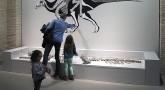 Museo de Ciencias Naturales de Zaragoza, la vida en el tiempo