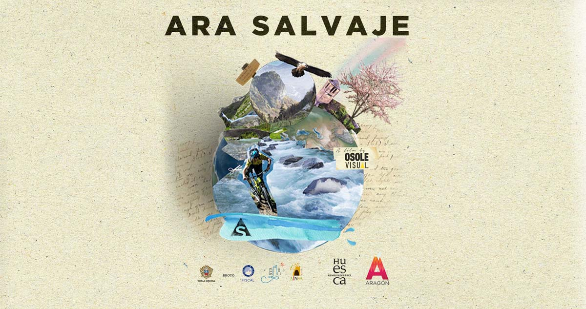 ARA SALVAJE, Osole Visual