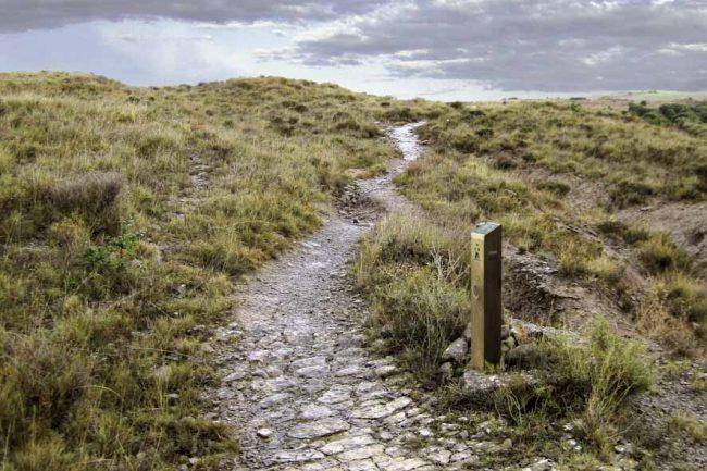 El Camino en dirección a Ruesta, calzada romana (Undués de Lerda.)