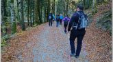 Marcha nórdica, la forma de andar más completa