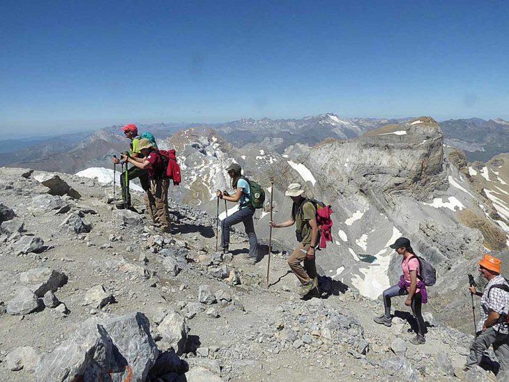 : Plantas de las cumbres del Pirineo. Flora del piso alpino