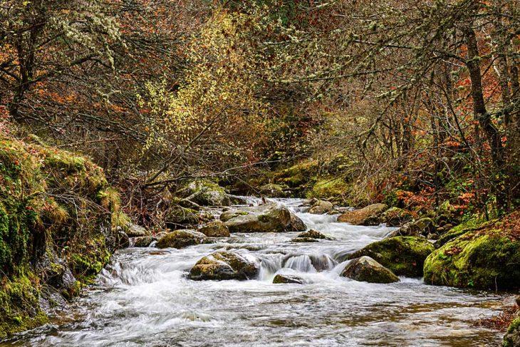Río Iregua, Parque Natural de Sierra Cebollera
